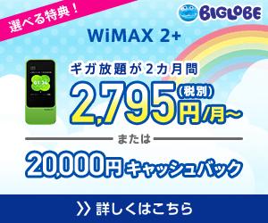 ポケットWiFi,BIGLOBE WiMAX