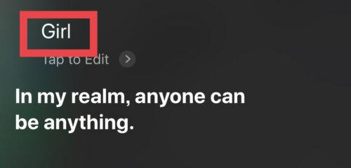 Siri,おもしろい,英語系