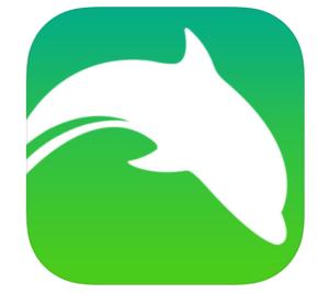 ドルフィン,ブラウザアプリ,Flash Player