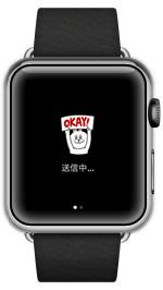 apple watch05