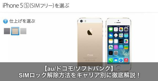iphone5s sim