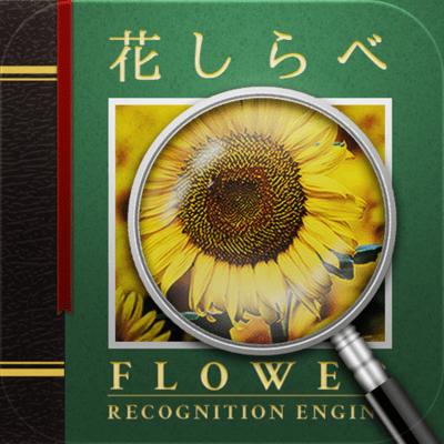 花しらべ 花認識 : 花検索